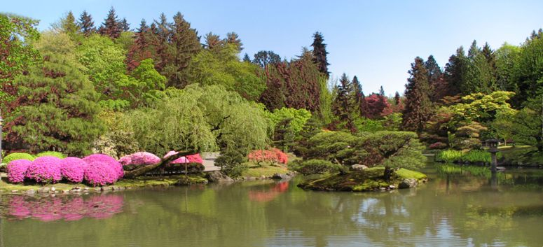 the the Japanese Garden in Seattle - Washington State - click on image for high resolution Panorama